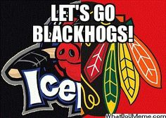 Rockford Ice Hogs want to see what the minors of hockey are like.  Go see the Hogs an affiliate of the black hawks