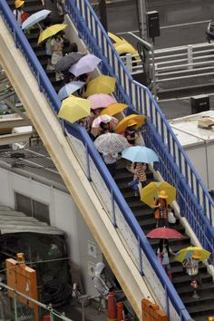 Tokyo - Now this I don't love. Too many damn umbrellas!