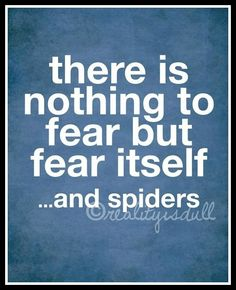 I am TERRIFIED of spiders, even though I could squash them in a second :)