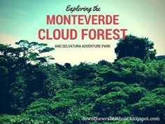 """Stroll through the Monteverde Cloud Forest in Costa Rica. Find out more at """"Down the Wrabbit Hole - The Travel Bucket List"""". Click the image for the full video."""