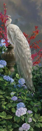lovers-peacock bookmark