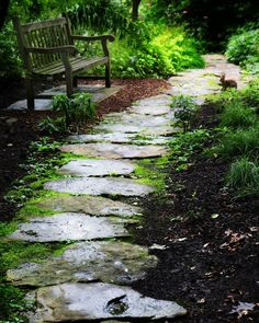 Path in the English Gardens at the Botanical Gardens in Saint Louis. A sweet little bunny rabbit and a classic wooden bench are highlights along this stone path into the forest.