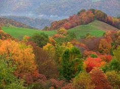 Autumn photos of WV...Fall Foliage Color Map...the Pumpkin House...:)