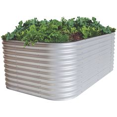 Find Birdies 2.9m x 1.5m x 0.74m AluZinc 6-In-1 Raised Garden Bed at Bunnings Warehouse. Visit your local store for the widest range of garden products.