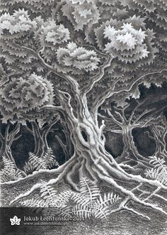 Rysunek drzewo z 2014 roku. Testowałem różne metody jak narysować drzewo i jak narysować liście. Nie miałem pomysłu jak dobrze rysować liście, dlatego narysowana korona drzew wygląda jakby miała warstwy. I tak myślę, że to jest dobry rysunek drzewa i lasu. Pozdrawiam, Jakub Łechtański.