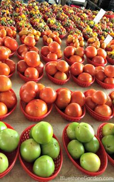 Tomatoes, twitter photo @Susan Daily