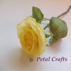 CLAY rose of   Www.petalcrafts.es