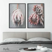 Set of 2 protea Prints on a grey background Protea Wall Art | Etsy