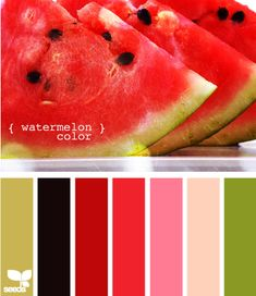 Watermelon colors - I must use this palette in something soon.  It is so pretty.