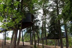 Tree Houses - Pedras Salgadas - Spa & Nature Park