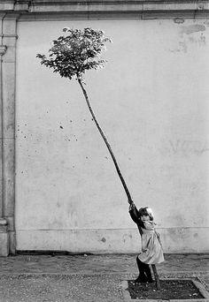 Sabine Weiss Petite Fille, Petit Arbre, Spain, 1981.