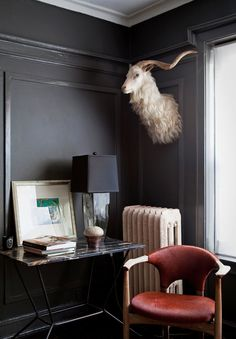 1000 images about taxidermy decor on pinterest for Interior designs red deer