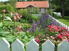 Don't you just love this cottage garden?