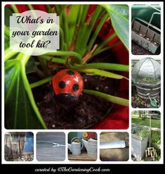 What's in My Garden Tool Kit? - 8 Gardeners Share Their Tools - The Gardening Cook