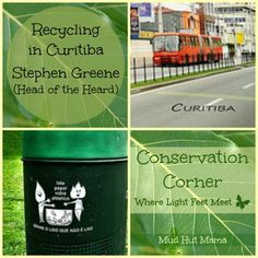Recycling in Brazil - Conservation Corner -- Thank you for this post @HeadoftheHeard!