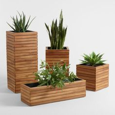 Garden Tools Plant your favorite annuals, ornamental grasses or even a small citrus plant in our exclusive Alicante outdoor planter. Crafted of acacia wood, its shallow metal insert means you can conserve potting soil. The small and large planters showcas