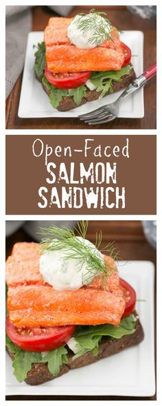Open-Faced Salmon Sa