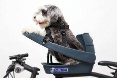 Buddyrider™ Dog Bicycle Seat Dog Bike Seat, Dog Bike Basket, Dog Seat, Bicycle Seats, Bike Baskets, Child Bike Seat, Bicycle Sidecar, Bicycle Dog Carrier, Dog Bike Trailer