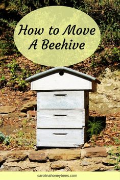 How to move a beehive. Beekeepers can move a beehive a short distance or a long distance. With proper planning moving a hive can be accomplished with minimal stress on the bees. How To Start Beekeeping, Beekeeping For Beginners, Shade Perennials, Shade Plants, Bee Hive Plans, Shade Grass, Raising Bees, Bee Boxes, Bee Farm