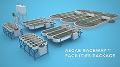 This can be used indoors or outdoors - http://www.microbioengineering.com/wp-content/uploads/2014/10/Algae_Raceway_Facility_Package_260.png