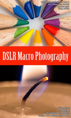 A comprehensive overview for taking macro photography.