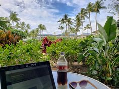 Staying at the Fairmont Orchid resort, Hawaii - Forever Lost In Travel Kai Restaurant, Fairmont Orchid, Waterfall Features, Hawaiian Islands, Big Island, Oahu, Snorkeling, Orchids, Exotic