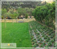Progettazione Urbana.  Progetto di riqualificazione dell'Orto dei Cappuccini: Viale Merello, Cagliari.