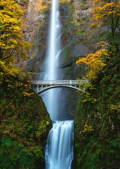 We`ll find the cheapest flights in the world, so you can have the trip of a lifetime. Your next adventure is waiting! Forest Waterfall, Mountain Waterfall, Waterfall Photo, Autumn Phone Wallpaper, Iphone Wallpaper, Oregon Forest, Waterfall Wallpaper, Multnomah Falls, Fall Pictures