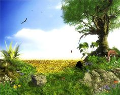 Animated Wallpaper Nature
