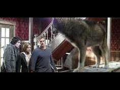 Terra dos Lobos - Assistir filme completo dublado