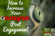 Organically increase your Instagram followers and post engagement