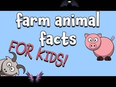 Farm Animal Facts for Kids Farm Animal Facts for Kids - YouTube<br>