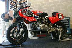 Suzuki-Martin GS1000 (Motorservice Spanjer Classic Race Team, Stef Hollands & Pascal Berger) | Flickr - Photo Sharing!