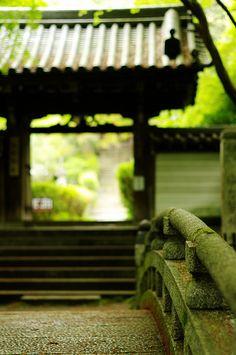 quiet approach to Senryuji, Kyoto, Japan: photo by yuuukiii, via Flickr