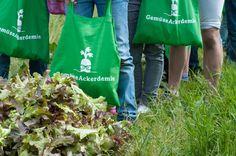 Fette Gemüsebeute(l) Paper Shopping Bag, Reusable Tote Bags, Harvest Season, Fat