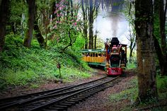 The train to the Oregon Zoo - Washington Park,  Memories....