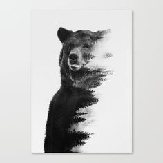 Bear Head Tattoo | The meaning of INK | Pinterest | Head ...