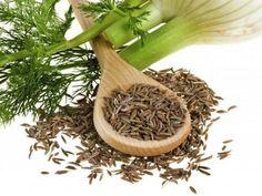 Je jednou znajzdravších surovín, aké môžeme vkuchyni používať. Vstarom Ríme avGrécku bol svojho času považovaný za prejav náklonnosti.Kôpor má špecifickú vôňu a chuť. Jeho využitie je však vš…