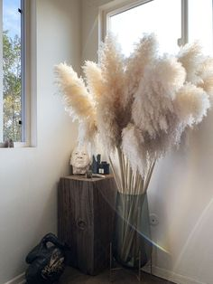 From accent pieces to floral arrangements, here's how to get the pampas grass trend at home. Grass Decor, Deco Originale, Home Decor Inspiration, Decor Ideas, Home Decor Trends, Dried Flowers, Boho Flowers, Ladder Decor, Living Room Decor