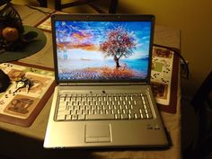 Dell Inspiron 1525 Laptop EXCELWORD Core 2Duo T5800 2.00GHz 3GB 320GB Windows 7
