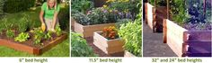 Preparing the ground for raised beds  • How tall should a raised bed be?  • Soil depth requirements for popular vegetables  • Height of popular vegetables at maturity  • Container gardening planting tips