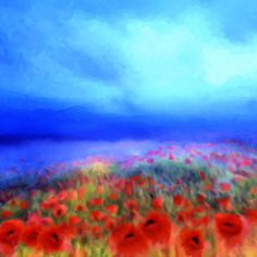 Poppies in the mist'...