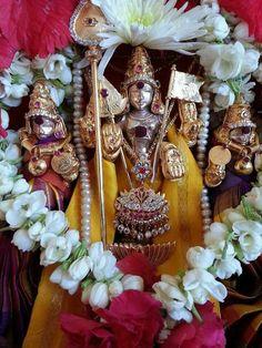 Muruga with his Consorts Valli n Deivayani Lord Murugan Wallpapers, Hindus, Pencil Art Drawings, Indian Gods, God Of War, Shiva, Ganesh, Samurai, Om