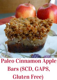 Pure and Simple Nourishment : Paleo Cinnamon Apple Bars with Gelatin (SCD, GAPS, Paleo, Dessert, Gelatin)