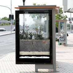 The Victorian Government's Melbourne Water has erected green bus shelters around Melbourne to demonstrate how rain gardens work.