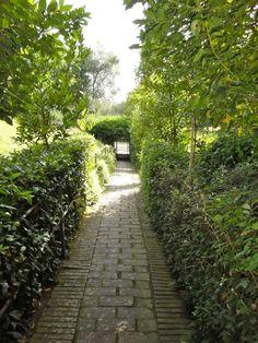 giardino della villa l'apparita, siena