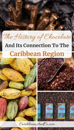 Discover The History Of Chocolate And Its Connection To The Caribbean Region Globally, chocolate is a billion-dollar industry, and to fully understand the history of chocolate is to learn about its connection to the Caribbean region. Caribbean Drinks, Caribbean Carnival, Caribbean Recipes, Caribbean Food, Antigua Caribbean, Barbados Travel, Belize Travel, Chocolate Dreams, Chocolate Lovers