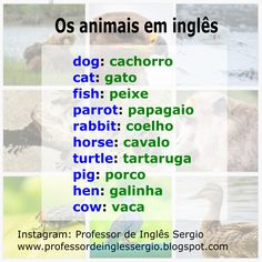 Os animais em inglês #inglês #aprenderinglês #inglêsparabrasileiros English Help, Improve English, English Course, Learn English Words, English Tips, English Study, English Class, English Lessons, Fluent English