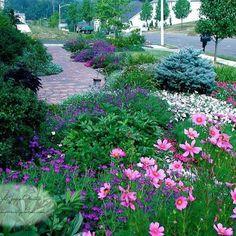 Landscape foundation planting Design Ideas, Pictures, Remodel and Decor