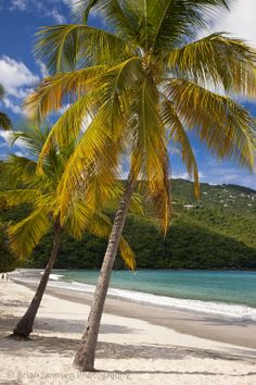 Megan's Bay, St. Thomas, US Virgin Islands. © Brian Jannsen Photography